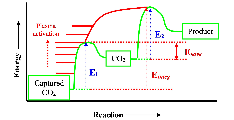 Calcium Cycle Diagram